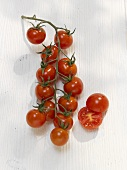 A truss of cherry tomatoes