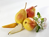 Three pears and two pear wedges (variety 'Forelle')