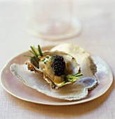 Oysters with caviar and Middle Eastern dressing
