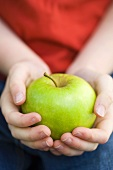 Two child's hands holding an apple