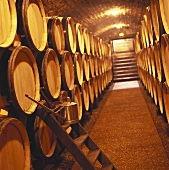 Henri Jayer wine cellar, Burgundy