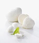 Mozzarella balls with basil leaf