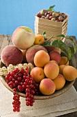 Bowl of mixed fruit