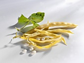 Wax beans with pods