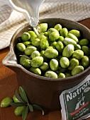 Pickling green olives