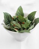 Spicy salad leaves (Vietnam)