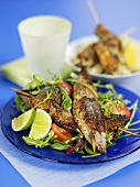 Grilled skewered fish on mixed salad