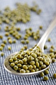Mung beans on a spoon