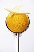Mango sorbet in ice cream scoop
