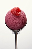 Fruits of the forest sorbet with raspberry in ice cream scoop