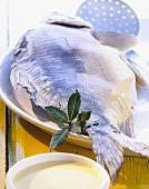 Carp cooked au bleu