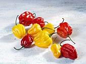 Yellow and red Habanero chillies