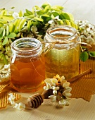 Acacia and flower honey