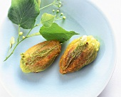Courgette flowers stuffed with pigeon