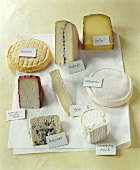 A selection of French cheeses