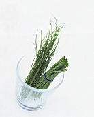 Halved bunch of chives in a glass