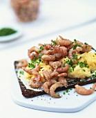 Scrambled egg with shrimps on pumpernickel