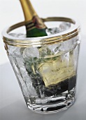 A champagne bottle in a champagne cooler with water & ice