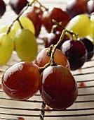 Glazed grapes