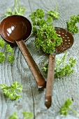 Curly parsley with ladle and skimmer