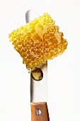A piece of honeycomb on a knife