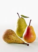 Drei verschiedene Birnensorten
