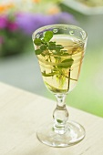 A glass of thyme liqueur
