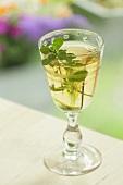 Ein Glas Thymian-Likör
