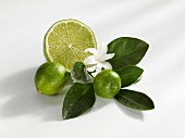 Limequats and half a lime with leaves and flower