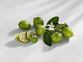Limequats, whole and sliced with flower and leaves