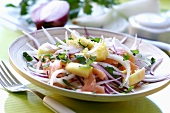 Red onion salad with smoked salmon