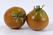 Tomatoes, variety 'Black Pear'