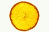 Eine Orangenscheibe