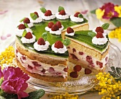 Raspberry cream cake topped with green jelly