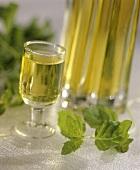 Mint liqueur in a glass