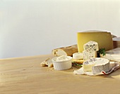 Various types of cheese with baguette