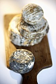 Four goat's cheeses on a wooden board