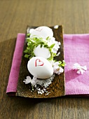 Boiled eggs in a dish with salt and blossom