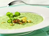 Cress soup with croutons