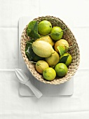 Lemons and limes in a small basket with lemon squeezer