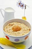 Porridge (Haferflockenbrei)