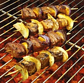 Meat and vegetable kebabs on a barbecue