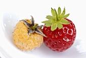 Eine Erdbeere und eine weisse Himbeere