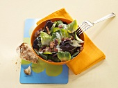 Cicorino salad with diced bacon