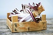 Radicchio trevisano in a wooden box