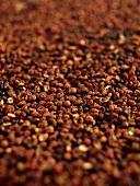 Szechuan pepper