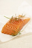 A salmon steak with dill