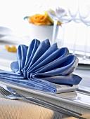 Napkin folding design: 'Treasure of the sea'
