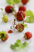 Little toy man among wild strawberries with blob of jam