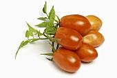 San Marzano tomatoes (Italy)